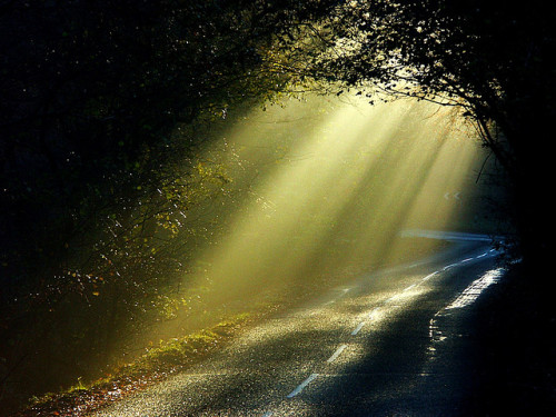 the road was blocked by light by algo on Flickr.