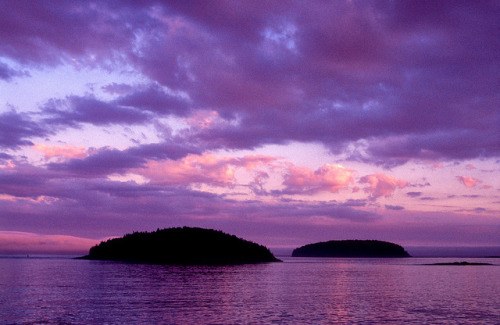 sapphire1707:  Purple Sunrise by g.bremer on Flickr.