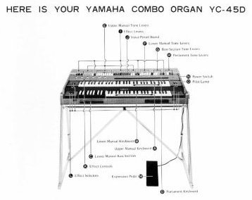 Yamaha YC-45D wish it wasn't so small, still totally awesome.