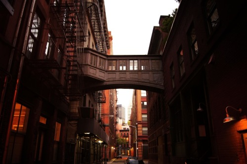 "Staple Street alley skybridge at twilight. Tribeca, New York City  I have favorite streets. They haunt me in all the best ways. They represent the New York City in my mind. Everyone seems to have a different version of New York City in their mind. My version was formed early on, a result of falling in love with a combination of streetscapes in classic cinema, futuristic sci-fi city environments in literature and film, and years of traversing New York City on foot.  These streets tug at memories I haven't made yet while yanking memories I treasure from the deep recesses of my mind. This is one of those streets. It's Staple Street in Tribeca. A tiny alley-like street, it contains one of the most fascinating pedestrian bridges (also known as a skyway, traverse, skywalk and a host of other terms) I have ever seen in New York City.  —-  Some history about this street: ""In 1894, New York Hospital built the House of Relief, a downtown clinic, on Jay from Hudson to Staple, with an ambulance entrance facing Staple. In that year The New York Herald noted that the hospital was sending its ambulance out as often as seven times a day, sometimes on emergencies involving sunstroke, ""which so often occurs in the lower part of the city,"" perhaps because of the large number of men working outdoors on the docks.  In 1907 the hospital built an annex across Staple Street (replacing the saloon/row house at Jay and Staple) as a stable and laundry, connecting it at the third-floor level using a pedestrian bridge. Although Staple Street was then just an industrial alley, the hospital had the architects Robertson & Potter design a handsome little building with a terra cotta plaque bearing the ""NYH"" monogram on the Staple Street side. The monogram is still there."" - from ""Streetscapes: Staple Street in TriBeCa"" New York Times By Christopher Gray, February 2001  —-  View this photo larger and on black on my Google Plus page  —-  Buy ""In Dreams - Staple Street Skybridge - New York City"" Posters and Prints here, email me, or ask for help."