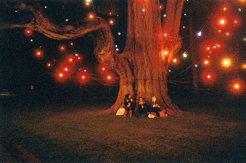 Let's have a magical night under a tree