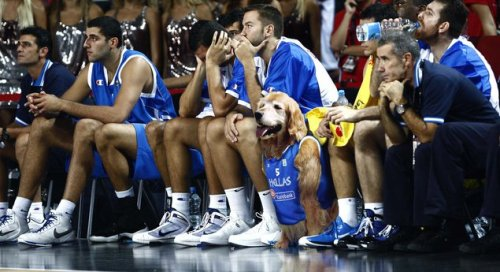 "Washed-Up Air Bud Signs With Greek Pro Team  ""Bud is proud to bring his experience, his attitude, and, of course, his unique brand of dogged on-court antics to Kolossos,"" read a press release from Buddy's agent published Friday. ""He looks forward to meeting the fans and making whatever contribution the team asks of him, whether it's sinking his patented three-point 'muzzle shots' or helping young Hellenic players find the confidence to believe in themselves.""  More."