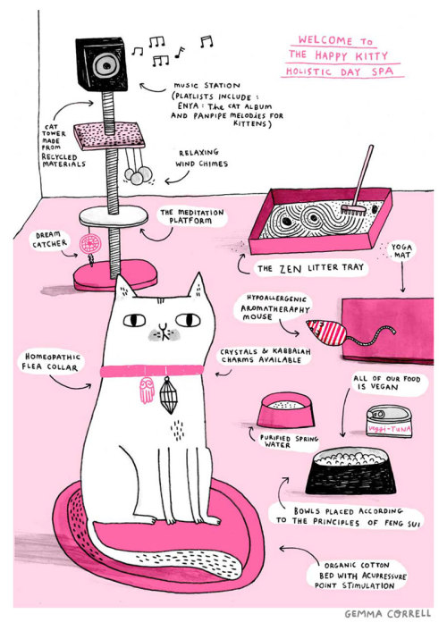 laughingsquid:  The Happy Kitty Holistic Day Spa