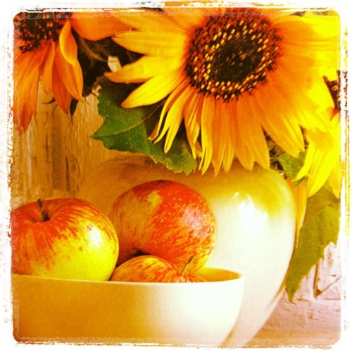 Fruit #marchphotoaday  (Taken with instagram)