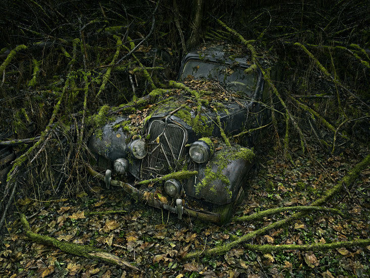 "In his ""Paradise Parking"" photo series, Paris-based photographer Peter Lippmann captures scenes where nature's taking over abandoned cars. Lovely, really. (spotted on Colossal)"