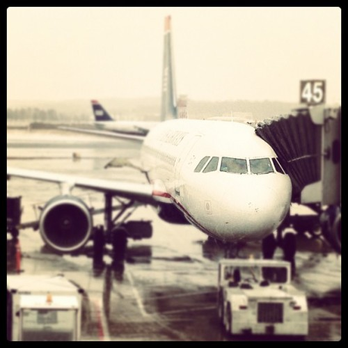the-boeing:  melomeetsworld:  #usairways #plane #airport #washingtondc #airplane #boeing #DCA #Reaganairport #planenose (Taken with Instagram at Ronald Reagan Washington National Airport (DCA))  Cactus.