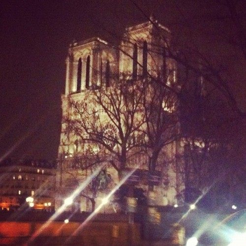 officialstyledotcom:  Notre Dame, a nuit. CE (Taken with instagram)  damnit i miss paris.