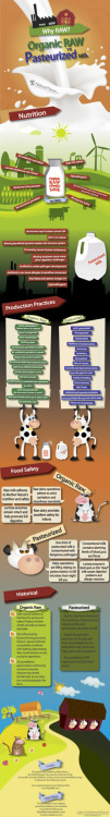 Check out this graphic by NaturalNews.com which shows a great & simplified comparison of Raw vs. Pasteurized milk  http://www.naturalnews.com/035130_raw_milk_infographic_pasteurized.html