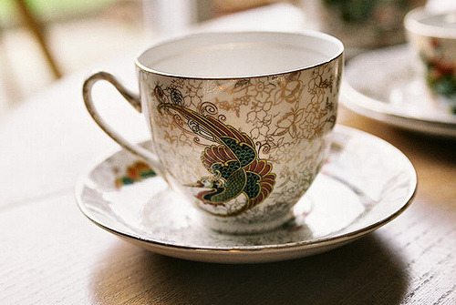 teacup By Rose Taxidermy