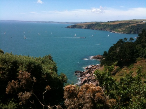 A perfect day for a sail out of the River Dart estuary. Across the river, the first headland sticking out into the water is Combe Point with the 'Dancing Beggars' rocks extending into the water. Walked there, taken the photos, posted on tumblr already. :-) Beyond that, is a long and very thin sliver of sand. That is Slapton Sands… walked there, taken the photos, posted a section of that on tumblr already (more to come on that part of the SW Coast Path later). :-)