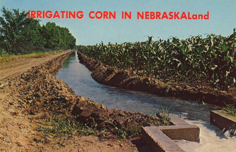 IRRIGATING CORN IN NEBRASKALand  Both pump and gravity irrigation, supplied from an underground river of water, support one of the most productive farm areas in the nation.
