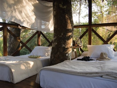 crushculdesac:  crazyhotels:canopy tree house - peru | via crazyhotels