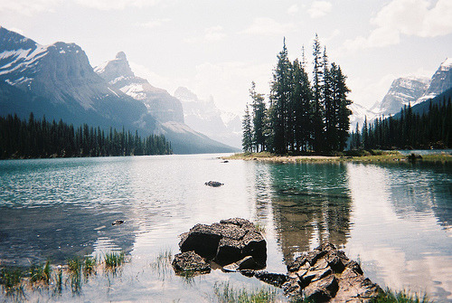 amor-vincit-0mnia:  Spirit Island (by flourfight)