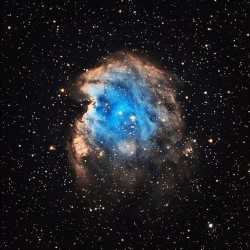 Monkey head nebula @donnyello @zuekster  #rachelsladder  (Taken with instagram)