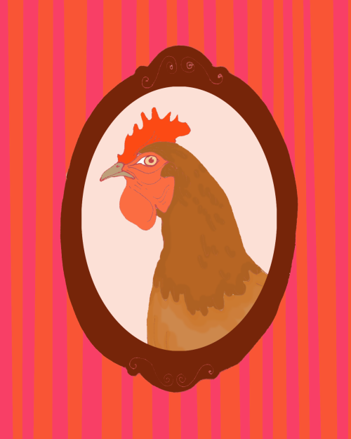i make portrait of a hen, pen on paper, digitally coloured