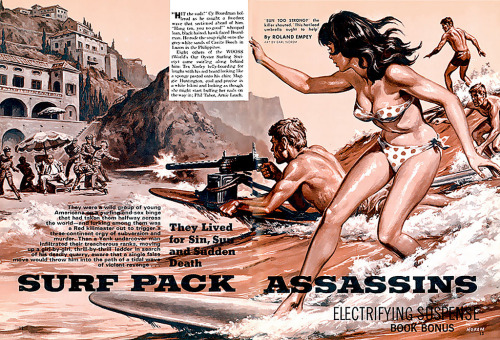 superpunch2:  Surf Pack Assassins.