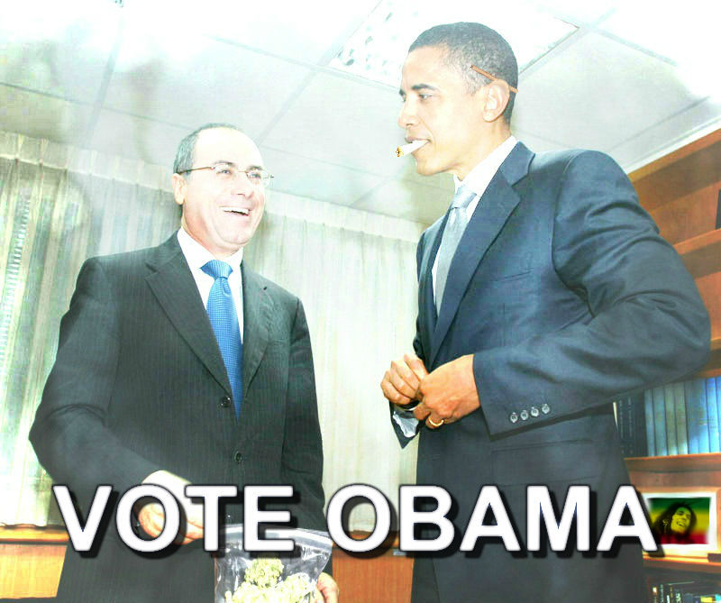 enviousbrainfarts:  2012 VOTE OBAMA !!!!!!  LOLOLOLOL
