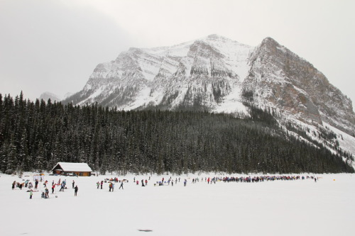 The Annual Lake Louise Loppet is today and above is a photo of the starting line! A great shot by Lee Kissel with a Canon 7D