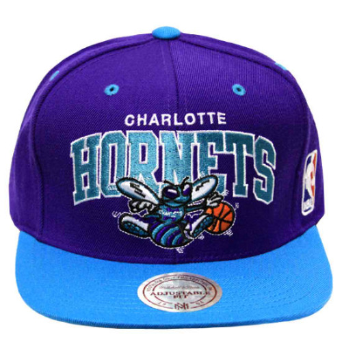 Charlotte Hornets:  The only mascot for Charlotte's NBA team.  B**cats beware, we're going to keep the hive alive.  Hey guys, do you remember the great and magnificent purple and teal paraphernalia that marked your childhood, adolescence, mid-life crises, or perhaps senior years?  If you don't, then you may have fallen into the deep, dark, b**cat den, and you must get the heck outta there!  Anyway, the Charlotte Hornets greatly marked my childhood, and I would like it to continue to be apart of my own mid-life crisis through grandmother-ing years.  Please, click the pic and sign the petition.  We're all in this together.  B**cats, beware of the nest…
