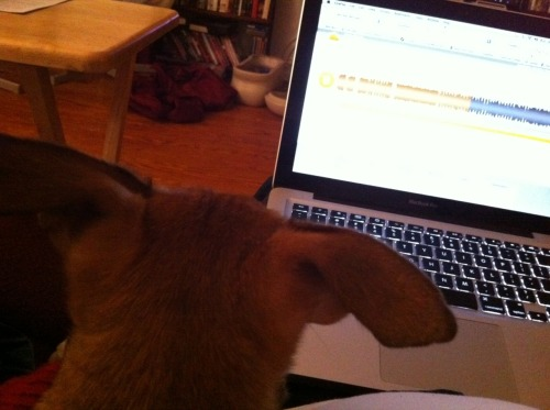 Bruno is perplexed by a Soundcloud share posted to Facebook by Grant Evans (a.k.a. Nova Scotian Arms).