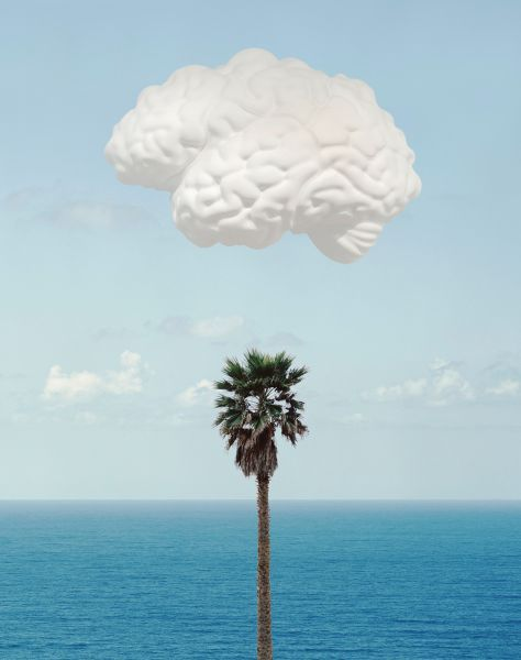 John BaldessariBrain/CloudPrints, Inkjet Print200928.94 in x 27 infrom the edition of 145