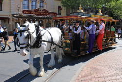 The Dapper Dans perform on the Horse-Drawn Streetcar by Loren Javier on Flickr.
