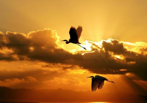 llbwwb:  Sunrise Pic By Giangiorgio Crisponi