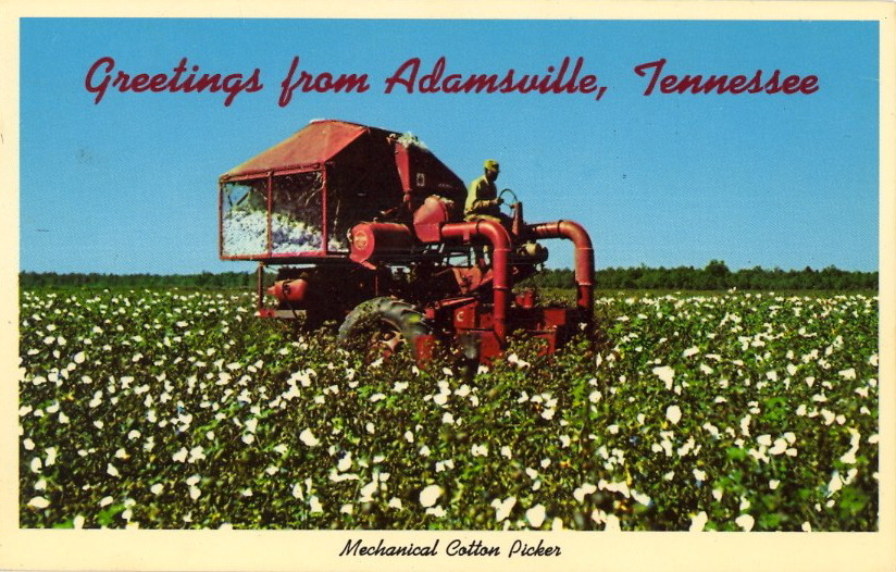 GREETINGS FROM ADAMSVILLE, TENNESSEE  MECHANICAL COTTON PICKER One of these modern machines can replace many, many hand pickers. Cotton is a vital crop throughout all of the great Southland.