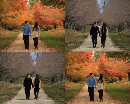 Half way done with my 4 seasons of engagement photos for my sister, of course the year that I try to do this is doesn't snow and stick to the ground once but I think it still looks wintery enough