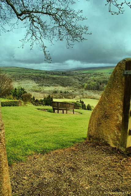 bluepueblo:  Hillside Bench, Cilgwyn, Wales photo via beverley