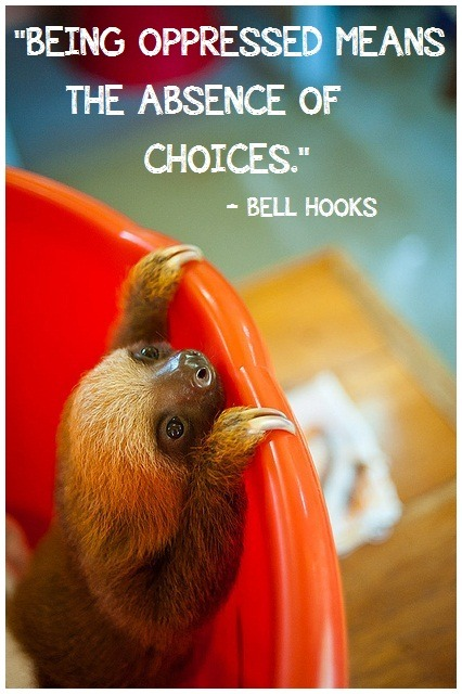 bell hooks makes an excellent point, that the limitation of options (though oddly liberating to folks who are indecisive - which does partially show privilege too) illuminates the issues that many transgender athletes face.  Since the Stockholm   Consensus in 2004, trans athletes have been allowed to compete, however, in great limitation based off of arbitrary binary based expectations of hormone levels, the appearance/functionality of their genitalia and their legal status.  If trans athletes do not follow this to a T (no pun intended), then they risk being eliminated from competition, even though for some folks, this realization may be physically, emotionally and financially impossible.  The limitations of trans people and their bodies in sports (and all athletes for that matter) are making sports enthusiasts see bodies more critically than ever before, and trying to define male and female as such is often misjudged and trite - we need to find new ways to define the means for competition, and until then, the oppression of trans people continues. anti-oppressivebabyanimals:  SUBMITTED BY: nextglass