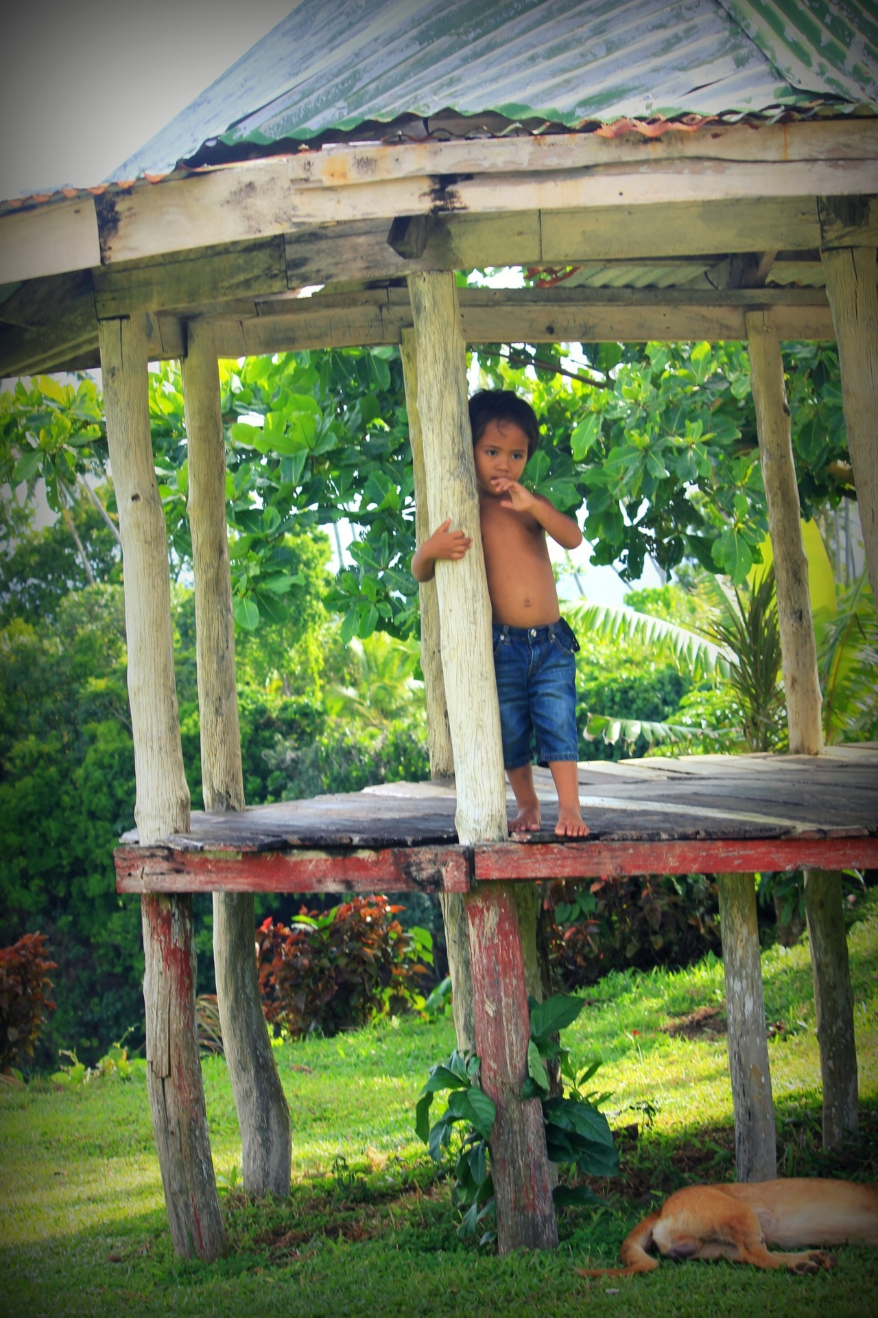 maretatana:  local boy in lalomanu, samoa