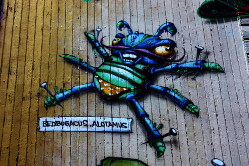 Bug, San Francisco 2011