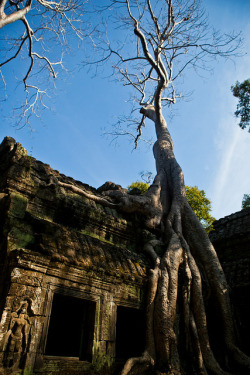 cambodia-angkorwat-49 on Flickr.
