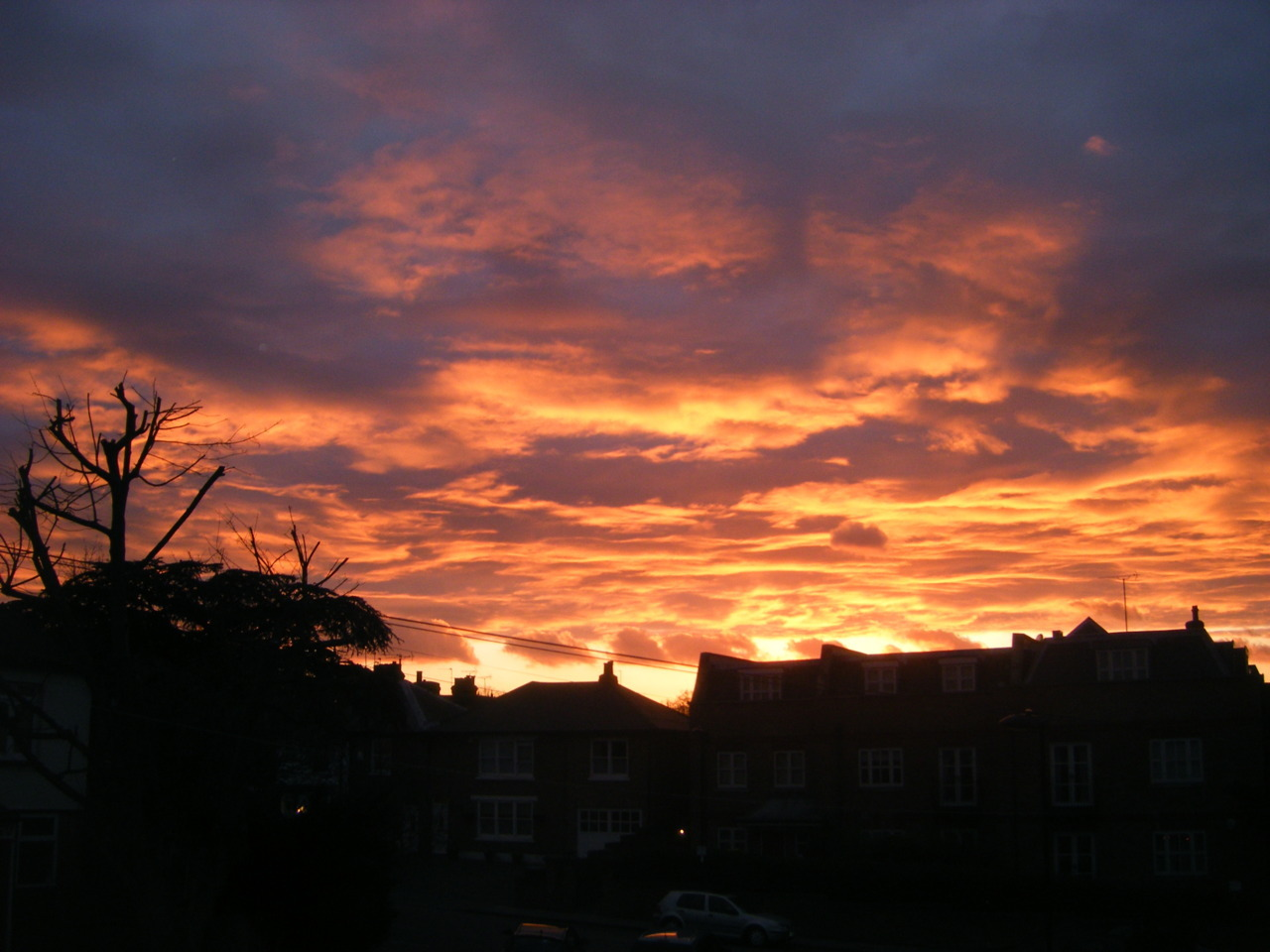 harrytomlomsom:  vickyleigh:  the sky looks like its on fire  i forget that you live not all that far away from me the sky is so pretty right now