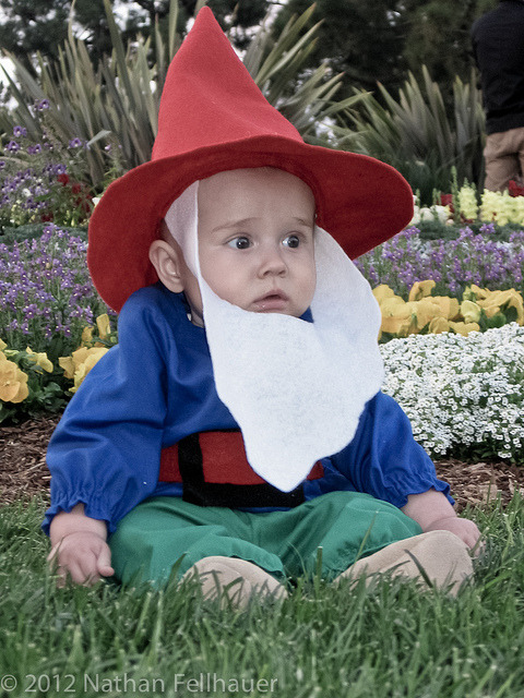 My Parents Made Me Be a Lawn Gnome for Halloween by nathan_fellhauer on Flickr.Via Flickr: This probably qualifies as a mild for of child abuse, but our son spent his first Halloween as a lawn gnome… XD