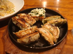 omnomnomjapanesefood:  Gyoza thanks for submitting, celchan!  One of my fav Japanese foods, gyoza! This was a variety with all different kinds of gyoza.