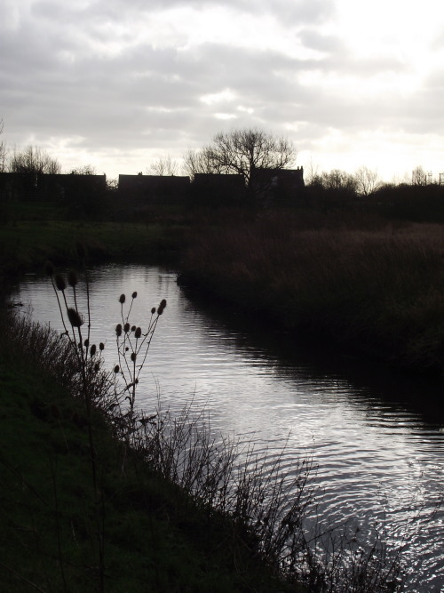 Erewash River, Stanton by Dale.  Ellie Fox.