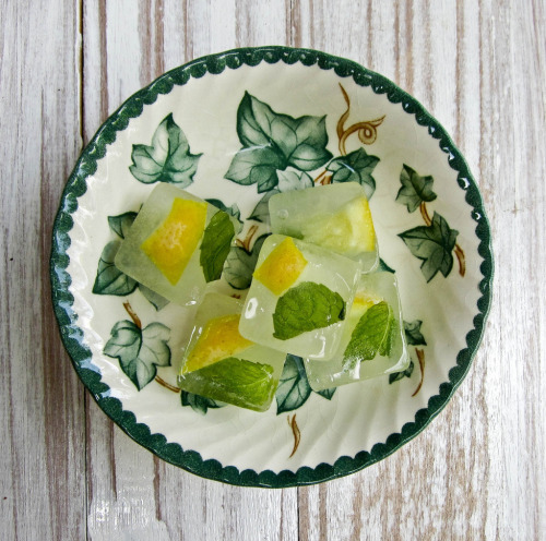 gastrogirl:  mint and lemon ice cubes.
