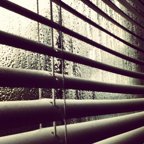 Rain, rain, rain #rain #window (Taken with Instagram at New House on Center St.)