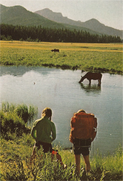 johnny-remember-me:  Yellowstone, 1972.