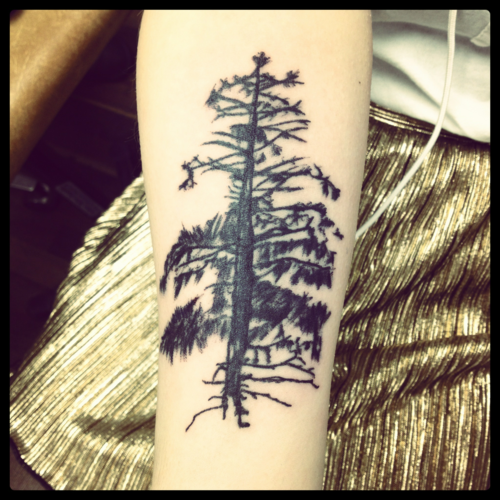 fuckyeahtattoos:  I got my spruce tree was done in Great Falls, MT by Tattoo Yorks Forever (which my adoptive father owns)  It's my favorite of all my tattoos. It on my forearm as a reminder of my home state, Montana. creeation.tumblr.com