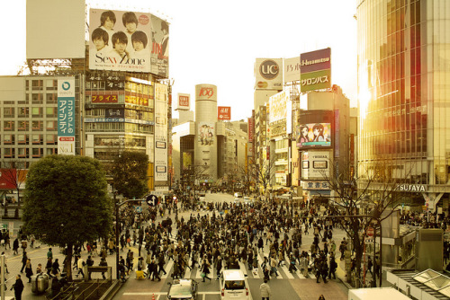 Shibuya by guen-k on Flickr.