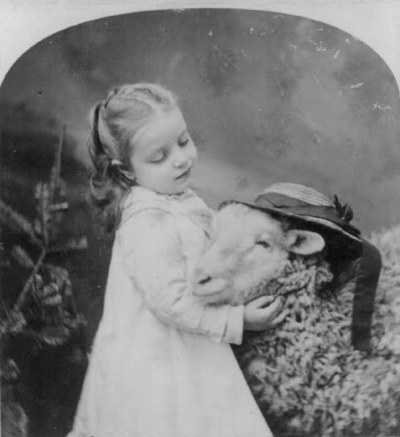 Adorable little Girl and her Sheep c.1877
