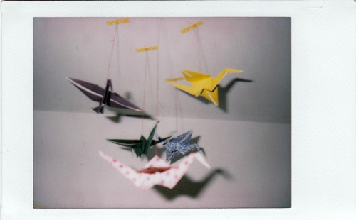 origami cranes by ghosting- on Flickr.
