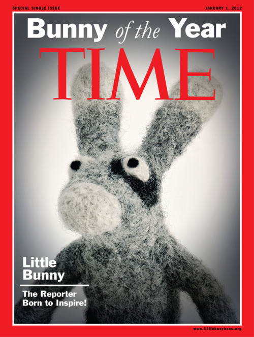 Little Bunny is the Bunny of the Year! The Reporter Born to Inspire!