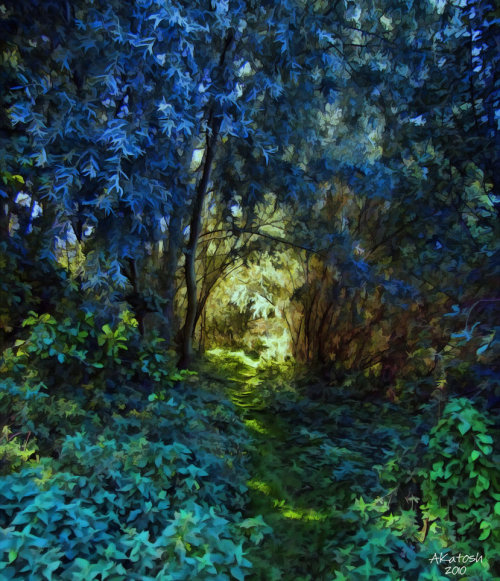 Path To Glade by *Pineman