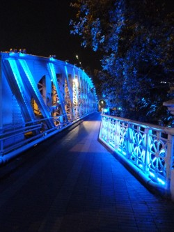 Anderson Bridge, Singapore submitted by: raura thanks!