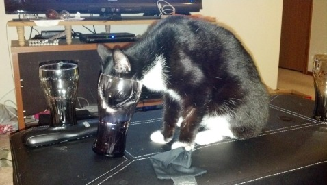 Caught Pirate drinking from a glass. Bahaha