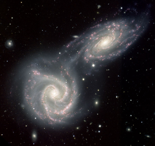 unknownskywalker:  NGC 5426/7 Like two skaters grabbing hands while passing, the two galaxies NGC 5427 (lower left) and its twin NGC 5426 (upper right), are beginning a collision that could take a hundred million years to complete. Already a bridge-like feature has begun to form between the galaxies. This intergalactic bridge acts like a feeding tube, allowing the twins to share gas and dust with one other across the 60,000 light years of space separating them. The collision may have also triggered bursts of star formation inside each galaxy. The star-forming, or HII, regions appear as hot pink knots that trace out the spiral patterns in each galaxy. HII regions are common to many spiral systems, but the giant ones in NGC 5426 are curiously knotted and more abundant on the side of the galaxy closest to NGC 5427. Despite their appearance in this two-dimensional image, NGC 5426's western (top) spiral arm is the one closest to us, as opposed to NGC 5427's southeastern (bottom) arm. NGC 5426 is also the closer of the two galaxies.